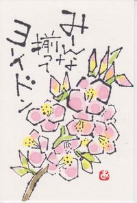 Nara__0002